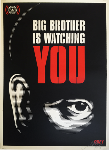 big brother is watching you 2006